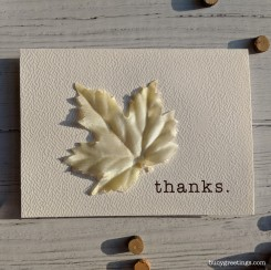 Buoy_Thanks_Leaf_01